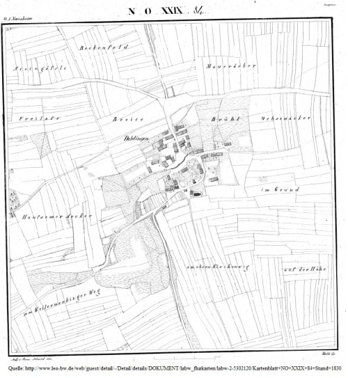 Flurkarte Dehlingen um 1830